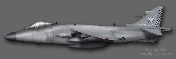 Sea Harrier FA.2 ZD610 801 NAS