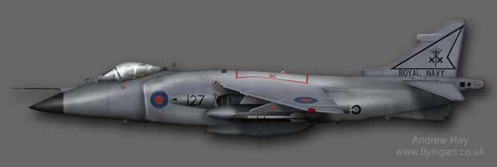Sea Harrier FRS.1  XZ455 800 NAS