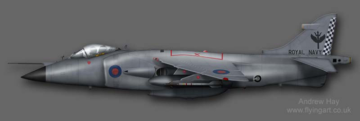 Sea Harrier FRS.1 801 NAS