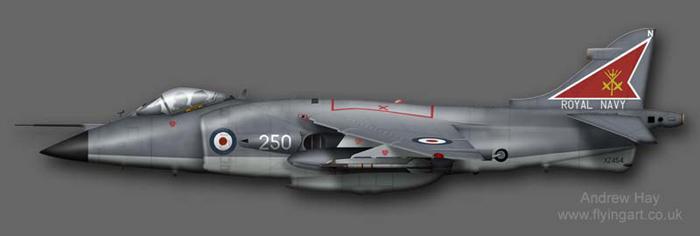 Sea Harrier FRS.1 XZ454 800 NAS