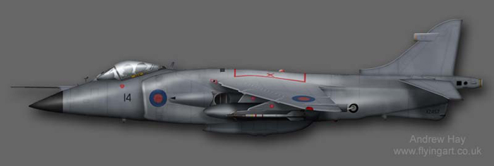 Sea Harrier FRS.1 XZ457 800 NAS Operation CORPRATE